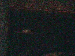 Image 191239